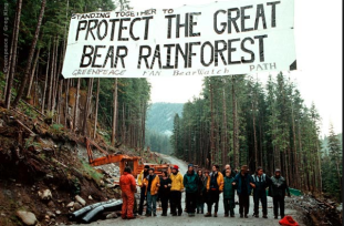 Protect The Great Bear Rainforest